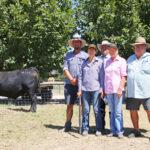 2018 Top Price Bull at Granite Ridge Angus Sale
