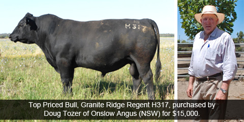 Top priced bull, Granite Ridge Regent H317